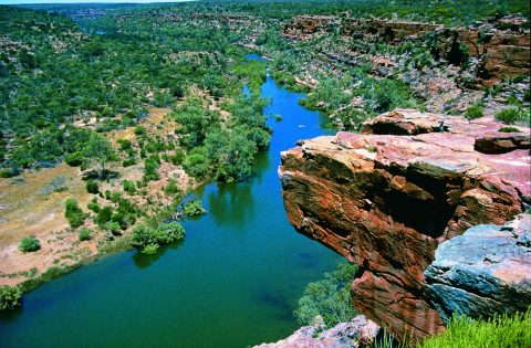 Top 5 experiences for Perth day tours