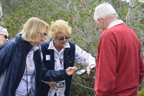 What to expect from Western Australia tours for seniors - Dilate Digital
