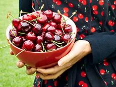 1 Day Manjimup Cherry Festival