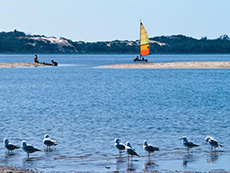 1 Day Leschenault Inlet and Collie River Cruise
