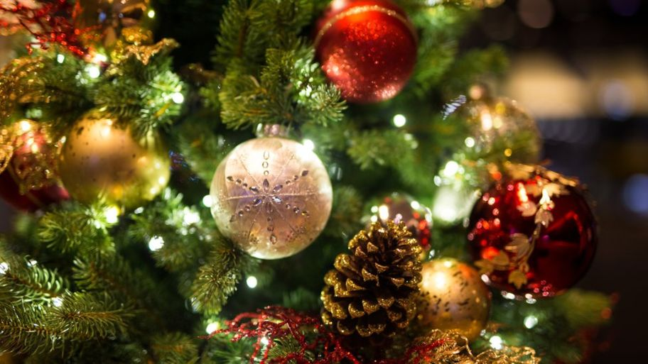 Christmas Mystery Day Tour