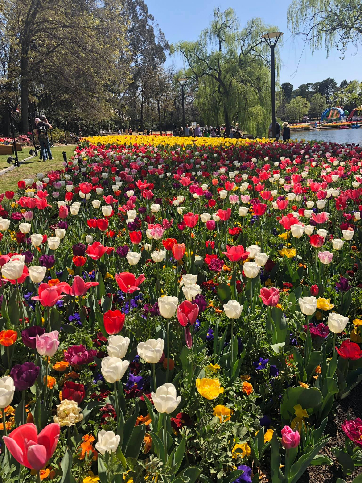 6 Day Floriade, Canberra, Snowy Mountains and Kelly Country