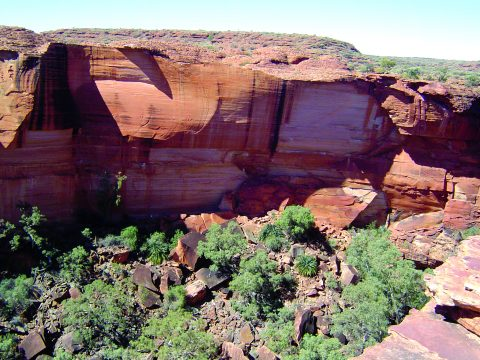 Kings Canyon Tours - Casey Tours