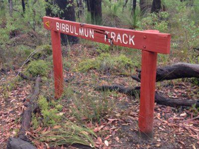 Bibbulum Track 2