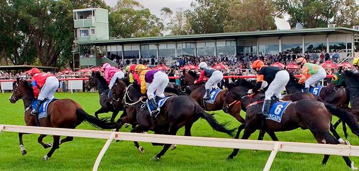 Pinjarra Races
