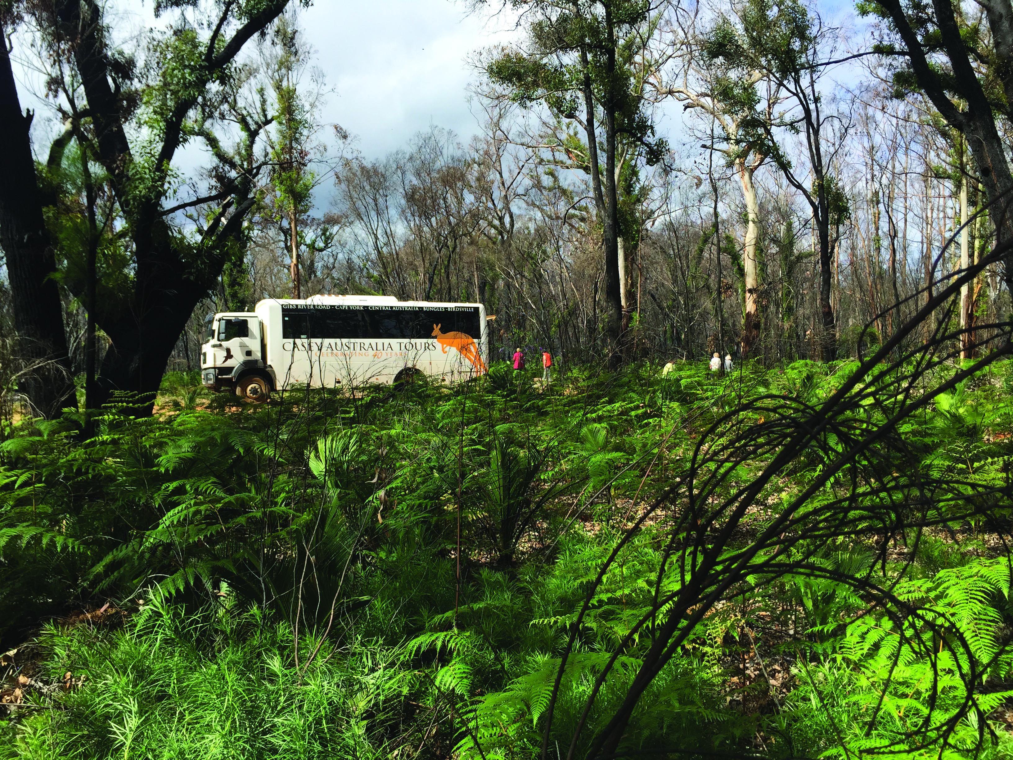 Casey Australia Tours Bus
