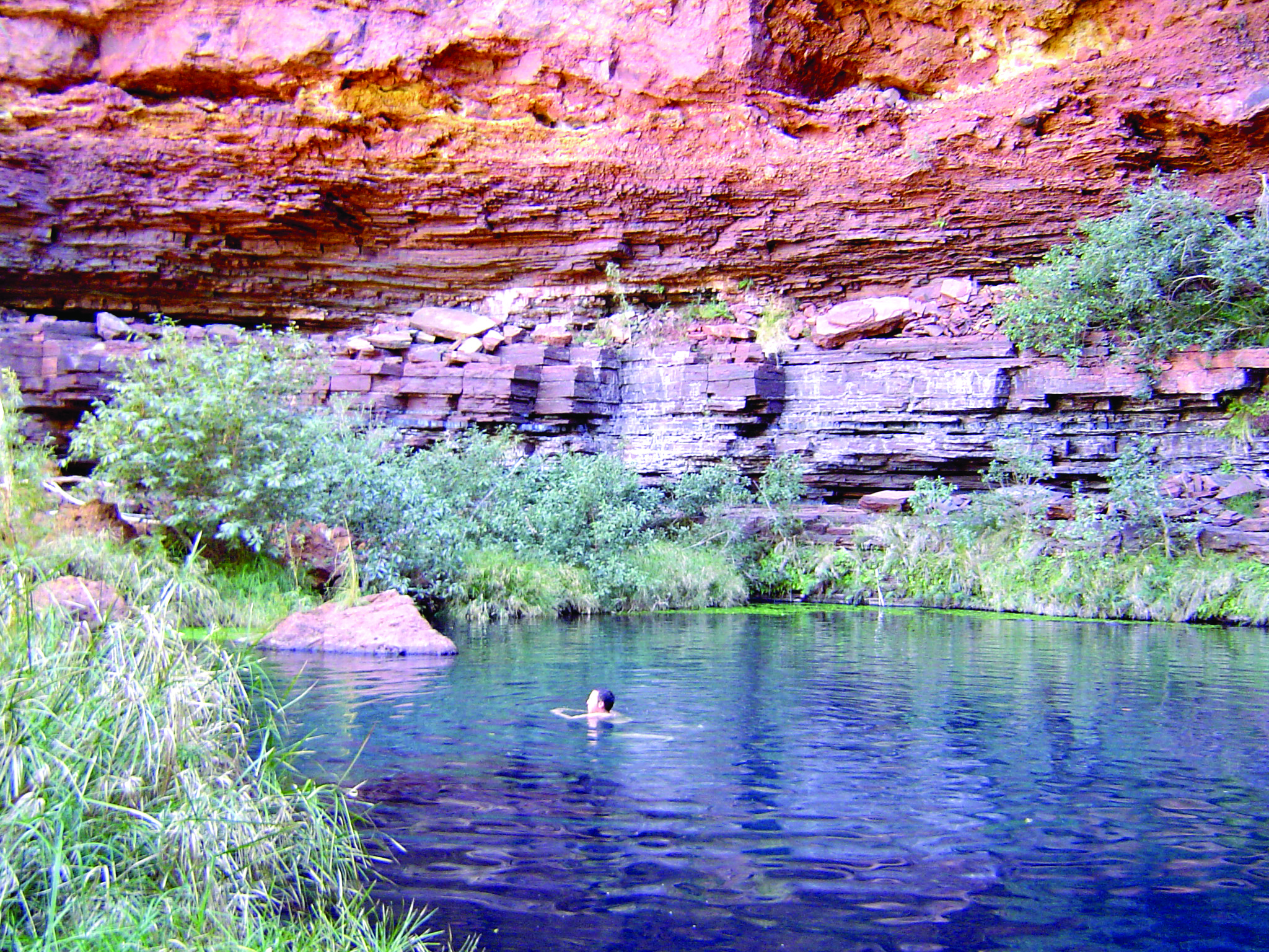 8 Day Karijini, Coral Bay & Shark Bay with Botanical Guide
