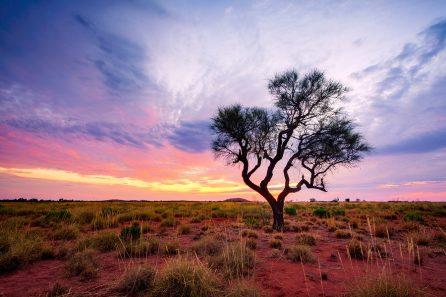 Pilbara region, Western Australia, Australia