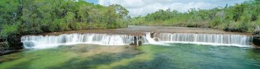 Fruit Bat Falls - Casey Tours