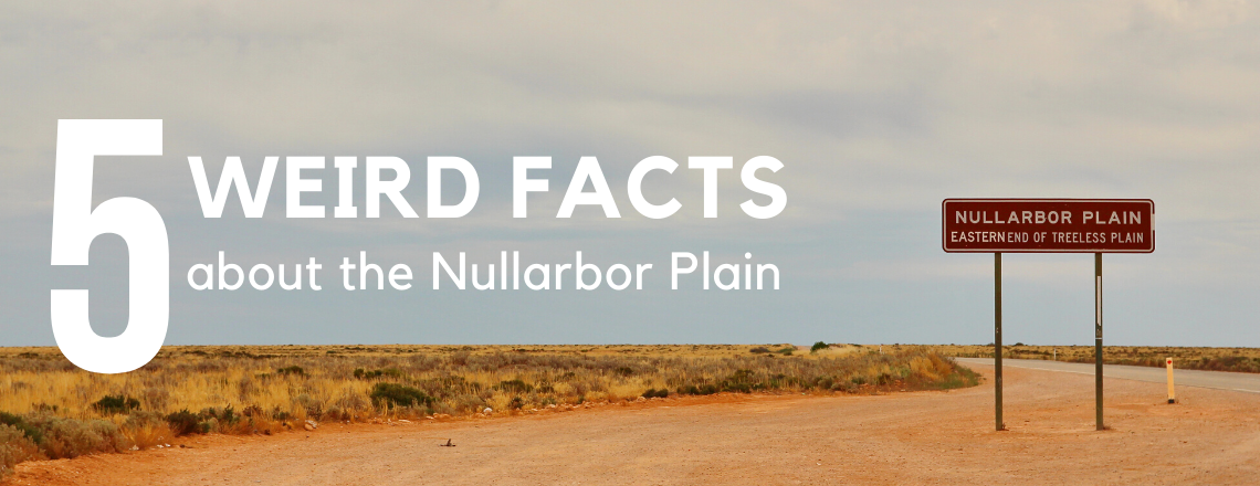 5 Weird Facts about the Nullarbor Plain