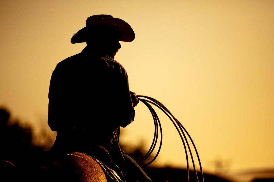 Boddington Rodeo Day Tour